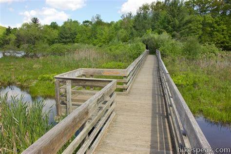 forest loop trail binghamton university hikespeak com
