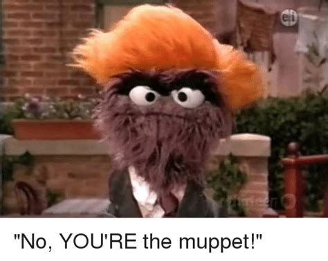 Muppets Memes - funny the muppets memes of 2016 on sizzle clothes