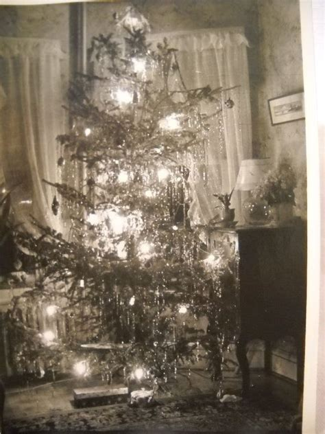 christmas photo c1940s christmas tree christmas photos