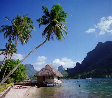 club bali hai moorea bungalow photography at lorcan gallery polynesia