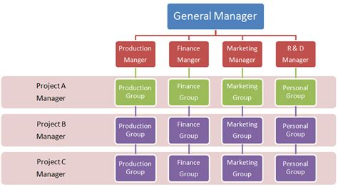 Matrix Analysis Of Structures project management matrix organization structure