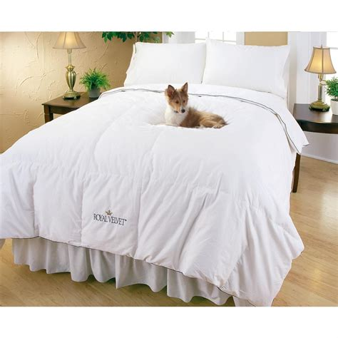 royal velvet down comforter royal velvet 174 white down comforter 173956 comforters at