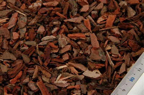 corteccia da giardino vendite corteccia di pino marittimo calibrato per il