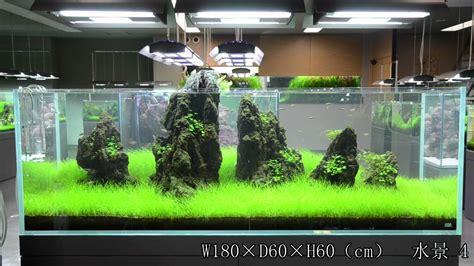 Create Layout Online braceless vs brace aquarium tank