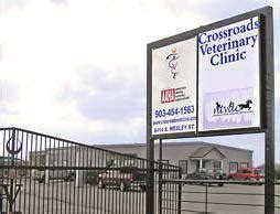 dental clinic ne northeast veterinary dental center in greenville