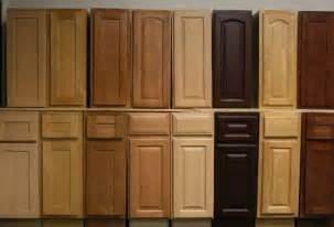 Kitchen Interior Doors how to choose kitchen cabinet doors only interior design