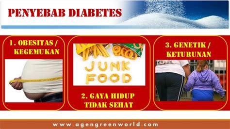 Obat Cina Untuk Batuk Kronis obat obesitas herbal alami tradisional