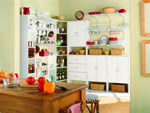 Closetmaid Pantry Pictures Of Kitchen Pantry Options And Ideas For Efficient