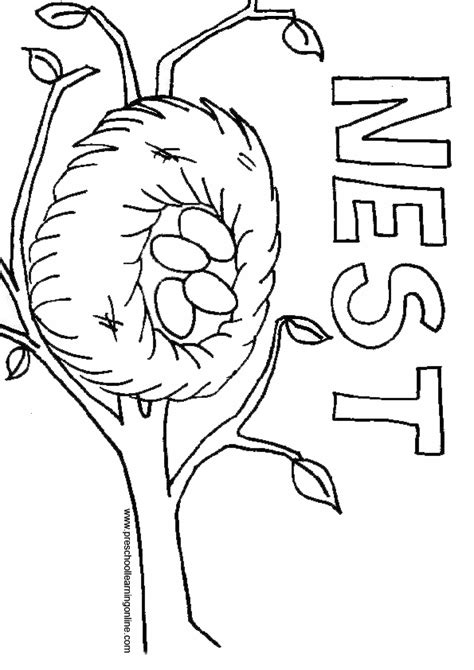 Coloring Page Nest by Nest Coloring Page Coloring Home