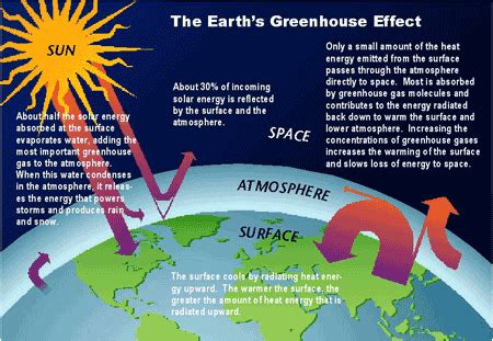 The greenhouse effect keeps the earth warm enough for life to survive