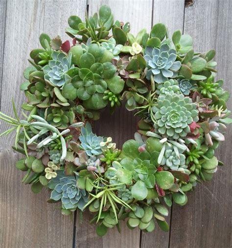 succulent wreath gardening pinterest