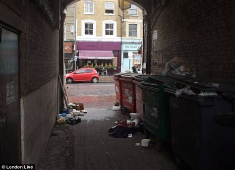 House Planning Online northcote road alleyway full of dustbins and bin bags