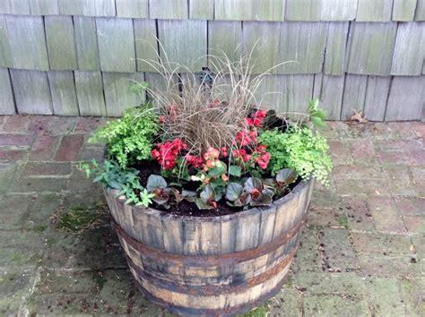 Whiskey Barrel Planter Ideas by Pin By Lindsay Romano On Garden Ideas
