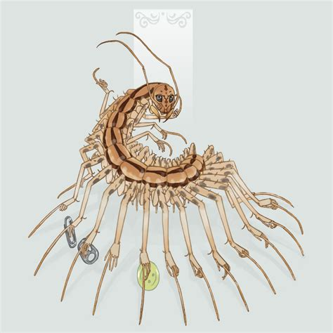 buy house centipedes the house centipede by dimespin on deviantart
