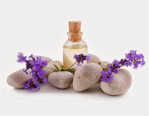 imagenes gratis en shutterstock flores de bach cl 237 nica osteopat 237 a en granollers