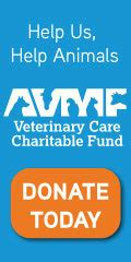 veterinarian  coeur dalene id lake city pet hospital