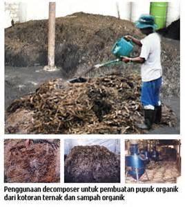 Bio Tanah Organik Mikro Organisme 15 Cc pemanfaatan rhizobium sp guna menyuburkan tanah untuk meningkatkan kualitas pertanian di