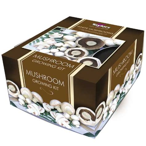 customer reviews  white button mushroom kit