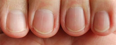 Finger Nails by 10 Things You Should About Your Fingernails