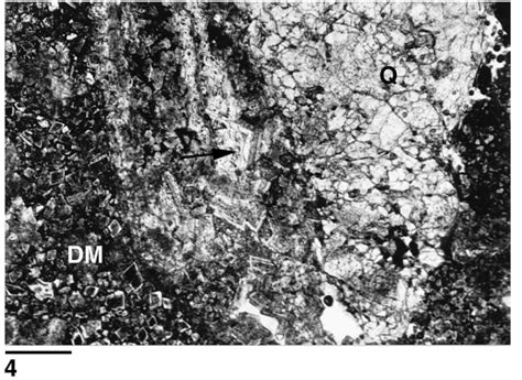 dolomite thin section plate 3 thin section photomicrographs of dolomite