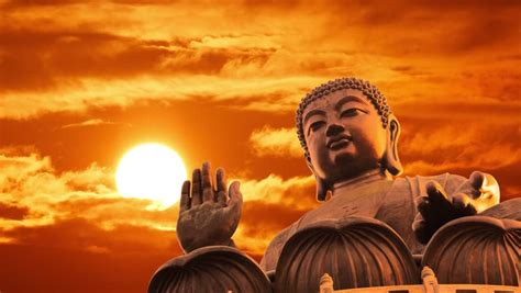 tian tan buddha statue  video de stock totalmente