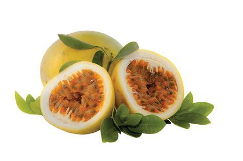 fruit x maracuja 1kg box 10 x 100g tropifruit