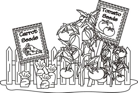 coloring pages for garden 15 best images about 4 h garden coloring pages on