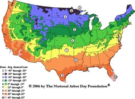 fruit zone map us hardiness zones for fruit trees