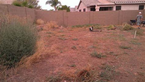 arizona backyard yard rev remodel arizona living landscape