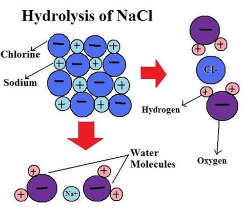 hydration chemistry definition hydrolysis chemistry libretexts