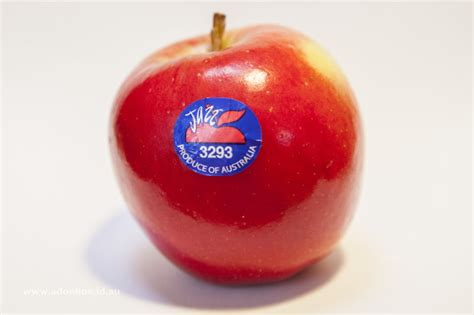 apple to apple jazz apples the grapevine
