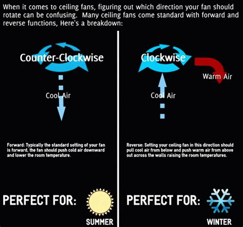 ceiling fan direction in the winter and summer