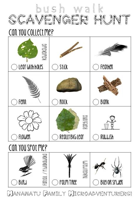 backyard scavenger hunt for kids nz bush scavenger hunt list for kids outdoor stuff
