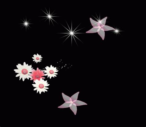 decent image scraps: flowers and stars