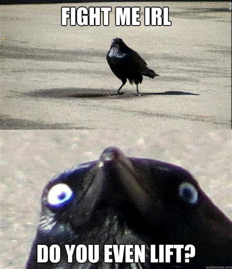 Fight Me Meme - birds freakin fight me irl know your meme