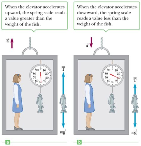 Bathroom Scale Elevator Physics A Weighs A Fish With A Scale Attached