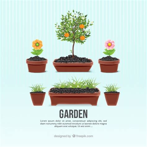 vasi di fiori in giardino vasi di fiori da giardino scaricare vettori gratis