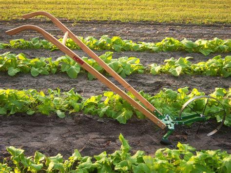 102 best images about garden tools on pinterest gardens perennials and garden tool storage