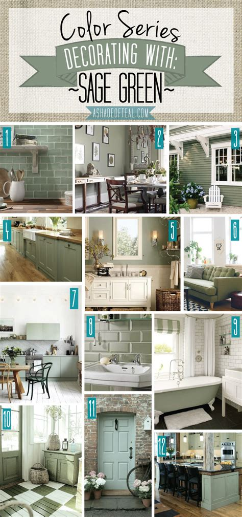 sage green home decor color series decorating with sage green