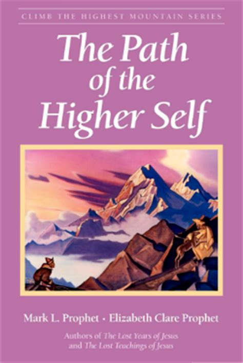 me and my higher self a book of memes to channel your inner wisdom books the path of the higher self climb the highest mountain