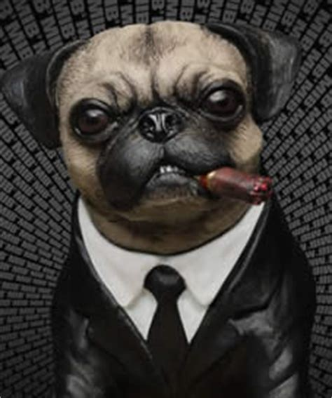 pug chino perros famosos frank hombres de negro