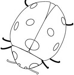 free printable ladybug coloring pages for - Ladybug Coloring Pages
