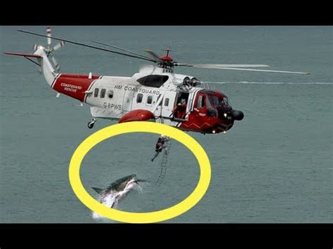 shark attack caught on tape by military helicopter camera