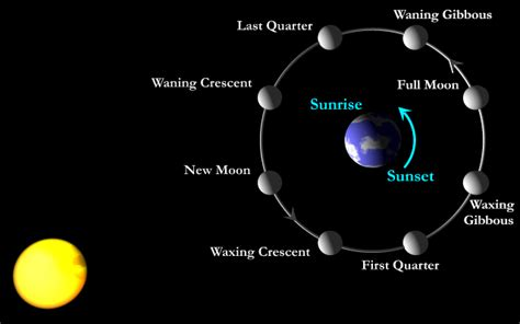 diagram of the earth sun and moon sun moon earth orbit pics about space