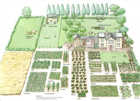 1 acre homestead layout garden ideas gardens garden planning and vegetables 1 acre homestead layout garden ideas gardens garden planning and vegetables
