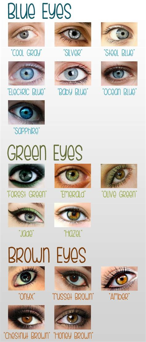 what color are my chart best 25 eye color charts ideas on baby eye