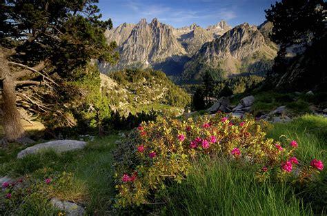 aig estortes estany de sant maurici national park pyrenees spain 1 25 000 trekking map alpina books national park aiguestortes барселона путеводитель