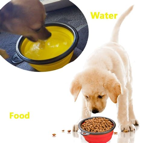 how can a puppy go without water travel collapsible bowl dogluxurybeds