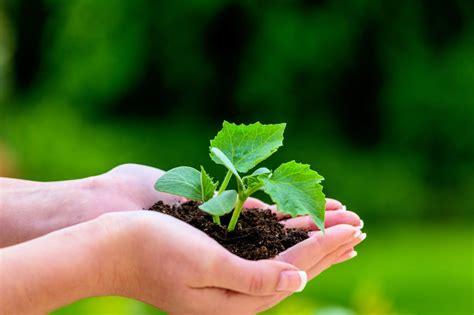 Garten Und Landschaftsbau Gehalt Netto by Garten Und Landschaftsbau Gehalt Studium Ausbildung Und