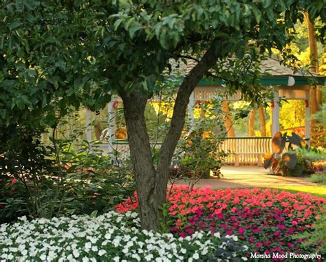 olive garden janesville rotary botanical gardens garden ftempo